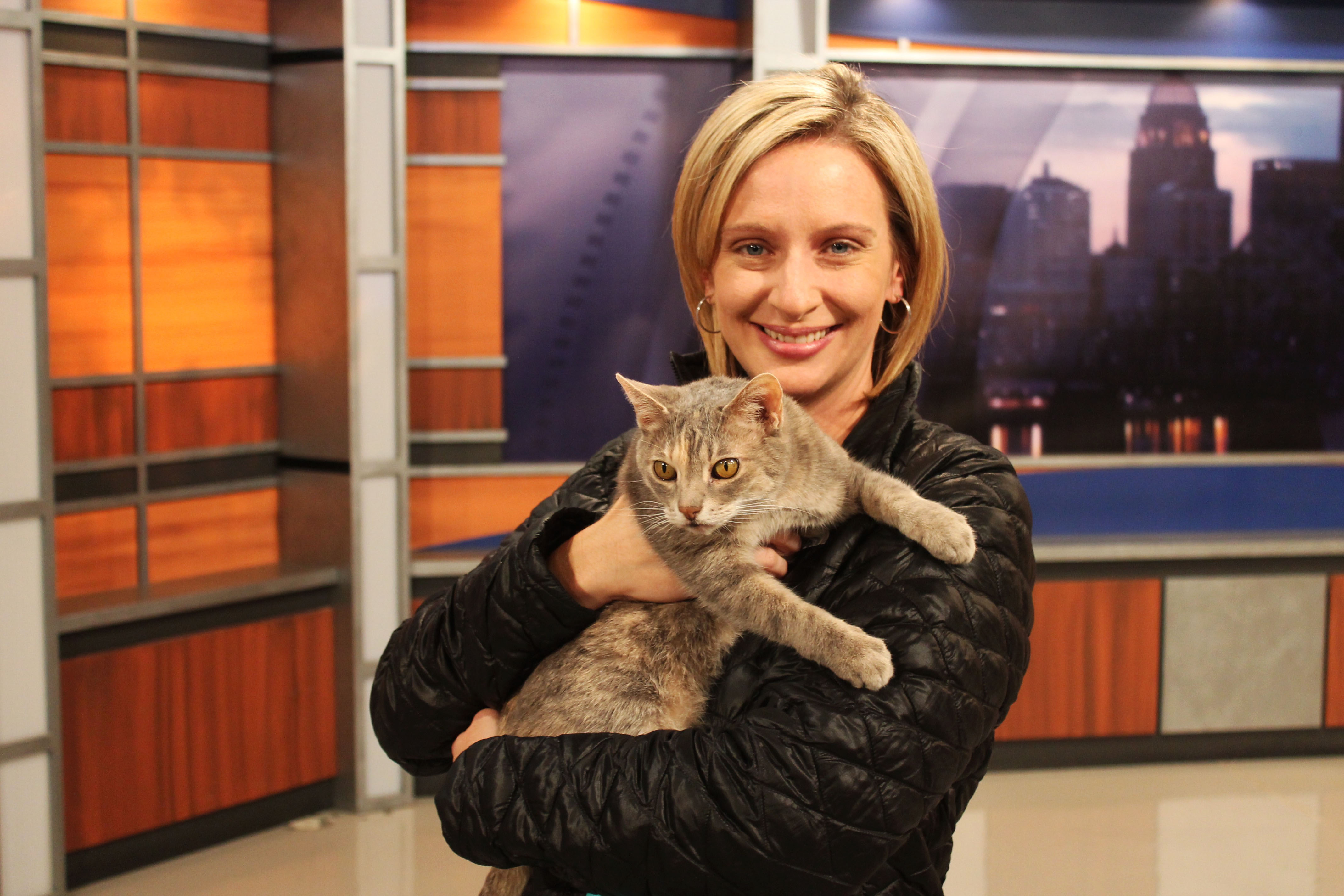 Louisville Meets Biscuits - #NationalCatDay Do5