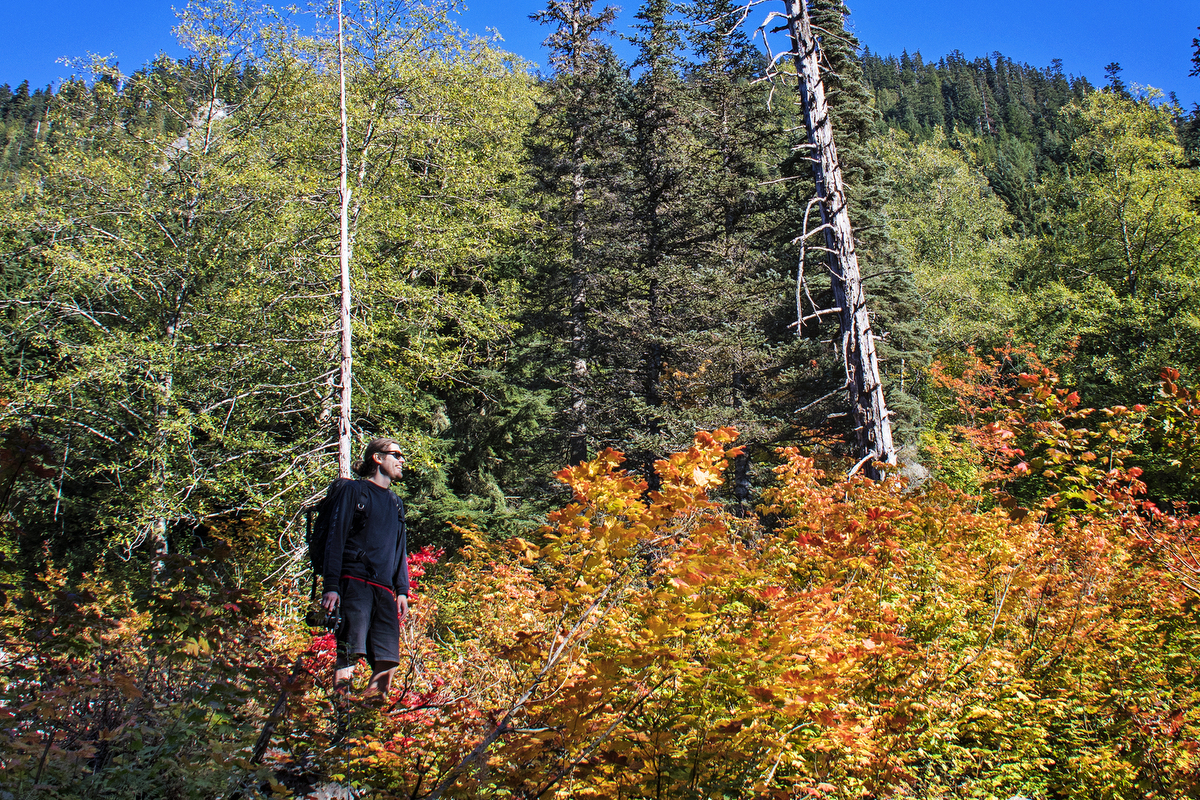 Seattle Adventures: A Fall Day In Snoqualmie