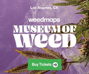 Cannabis Events in LA